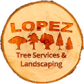 lopez trees
